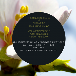 Purchase Tickets to The Mindseed Series